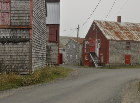 11-herring-processing-factories-seal-cove